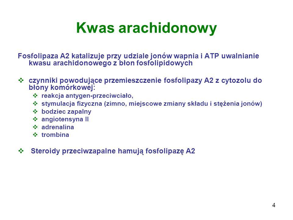 15 Fosfolipidy błonowe fosfolipaza A 2 kwas arachidonowy syntazy PGH ( cyklooksygenazy) PGG 2 PGH 2 Prostanoidy: prostaglandyny (PG) prostacykliny (PGI) Tromboksany (TX) Pobudzją agregację płytek i obkurczają małe naczynia krwionośne