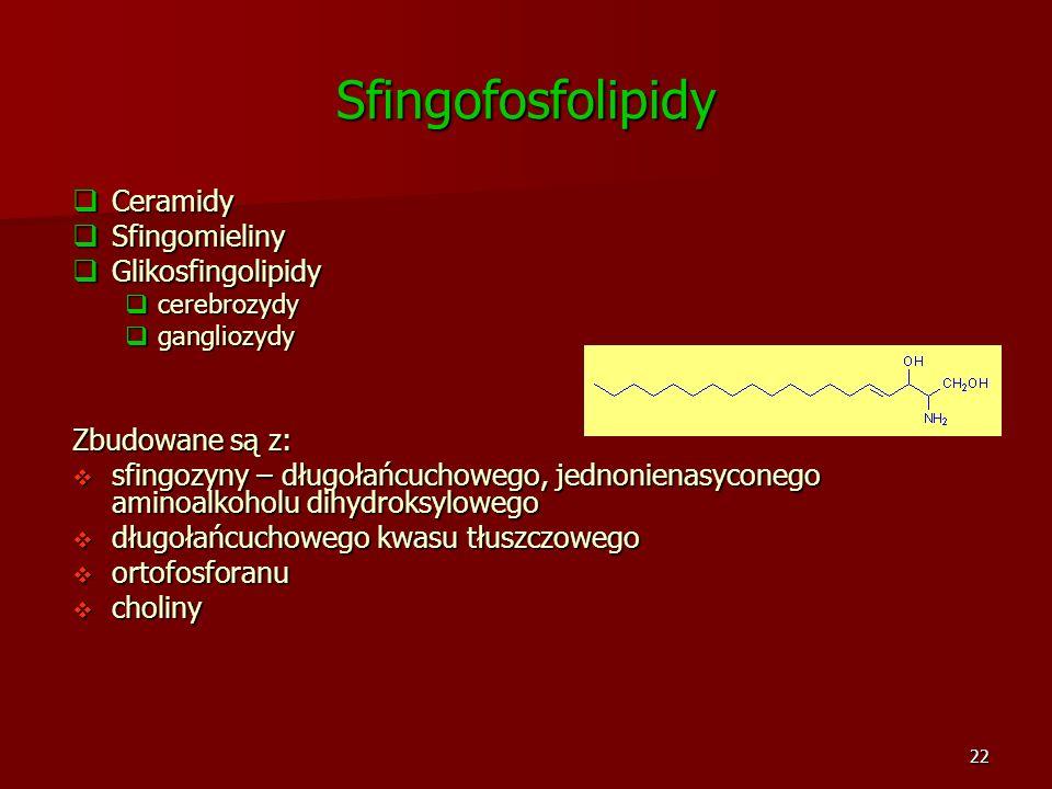 22 Sfingofosfolipidy Ceramidy Ceramidy Sfingomieliny Sfingomieliny Glikosfingolipidy Glikosfingolipidy cerebrozydy cerebrozydy gangliozydy gangliozydy