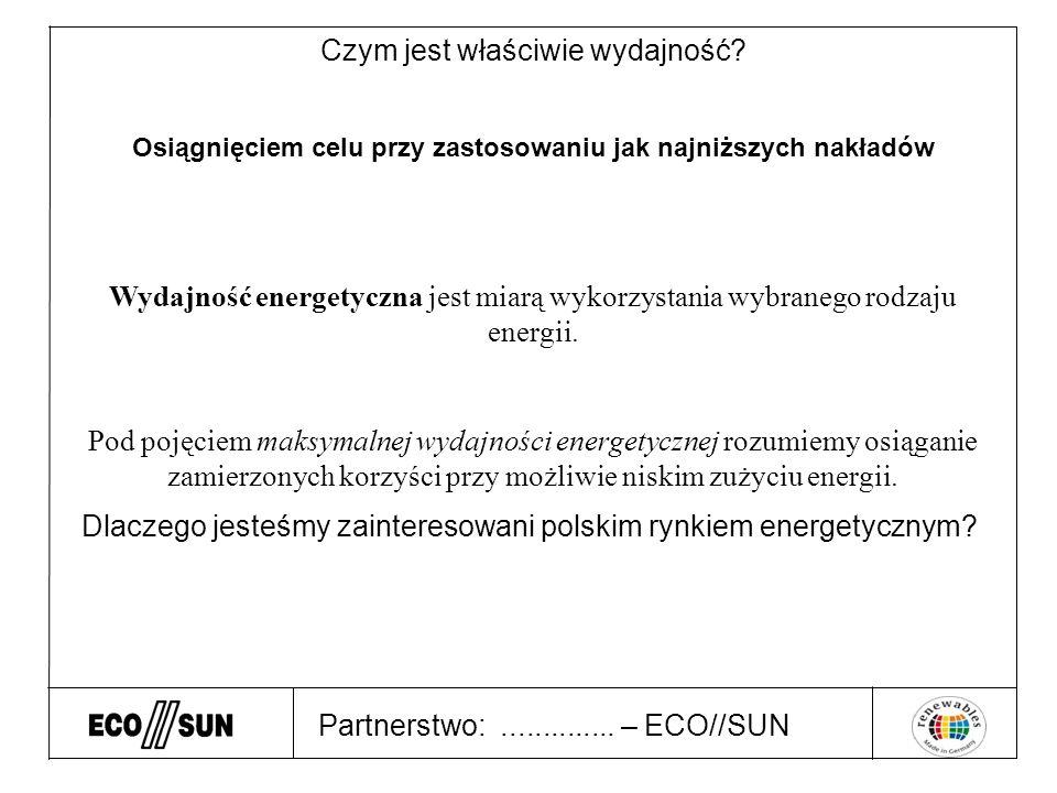 Partnerstwo:.............. – ECO//SUN Czym jest właściwie wydajność.
