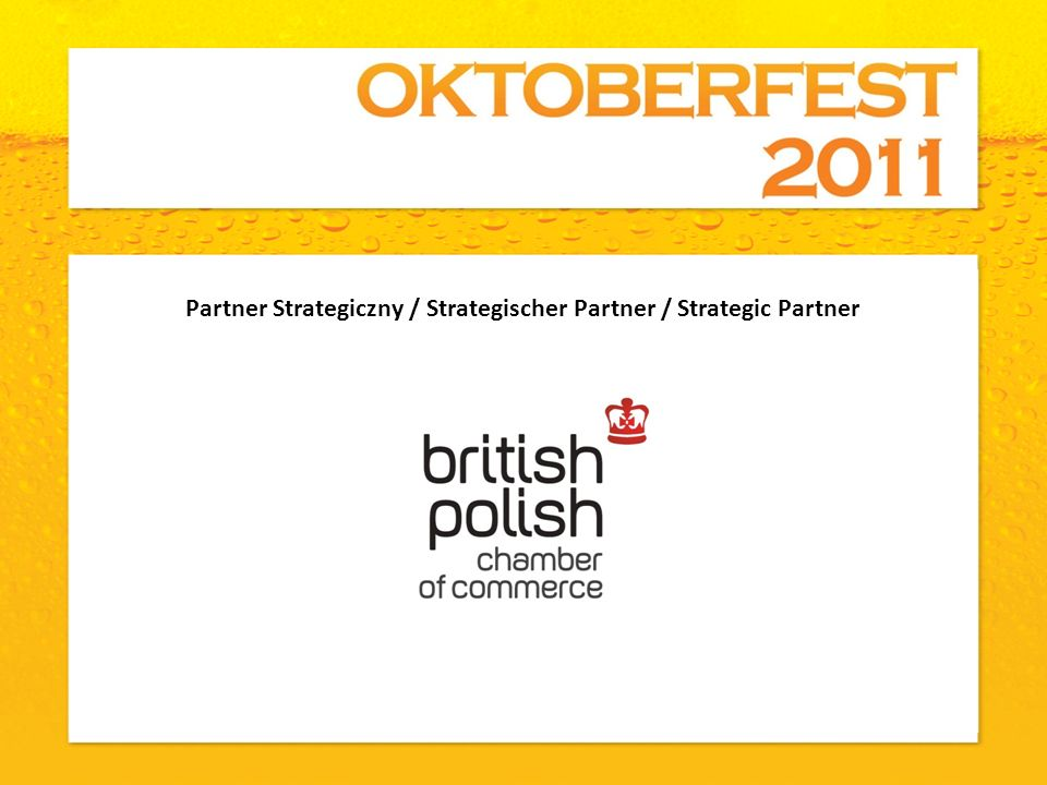 Partner Strategiczny / Strategischer Partner / Strategic Partner