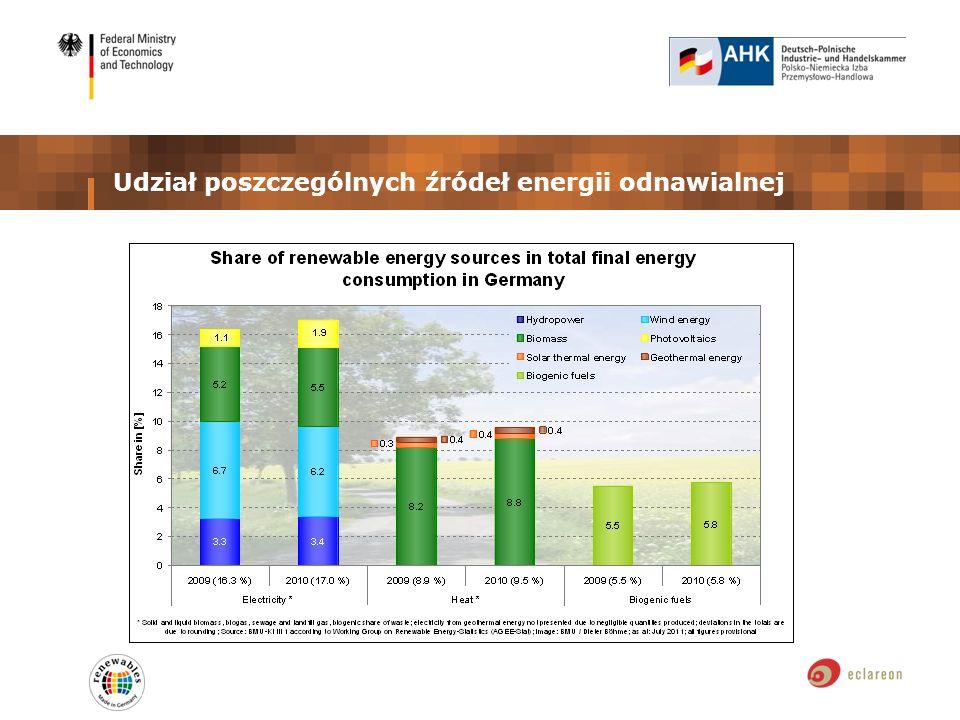 Udział poszczególnych źródeł energii odnawialnej