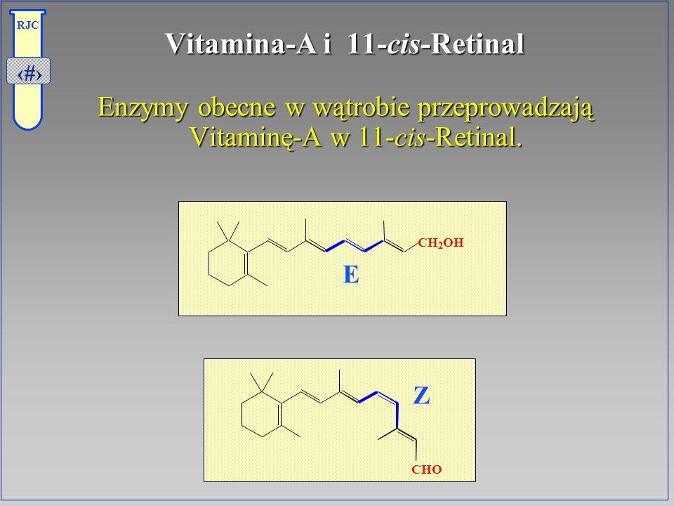 32 RJC Vitamina-A i 11-cis-Retinal Enzymy obecne w wątrobie przeprowadzają Vitaminę-A w 11-cis-Retinal. E Z CH 2 OH CHO