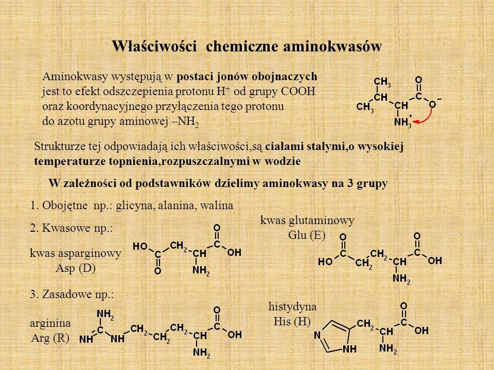 Właściwości chemiczne aminokwasów Aminokwasy występują w postaci jonów obojnaczych jest to efekt odszczepienia protonu H + od grupy COOH oraz koordynacyjnego przyłączenia tego protonu do azotu grupy aminowej –NH 2 Strukturze tej odpowiadają ich właściwości,są ciałami stałymi,o wysokiej temperaturze topnienia,rozpuszczalnymi w wodzie W zależności od podstawników dzielimy aminokwasy na 3 grupy 1.