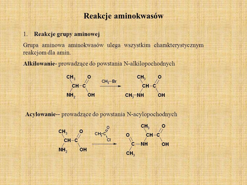 Reakcje aminokwasów 1.