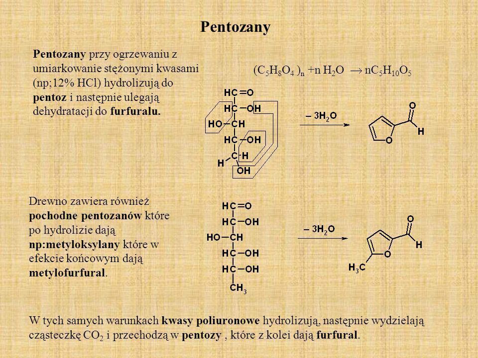 Heksozany Heksozanom przypisuje się budowę podobną do budowy celulozy tj.