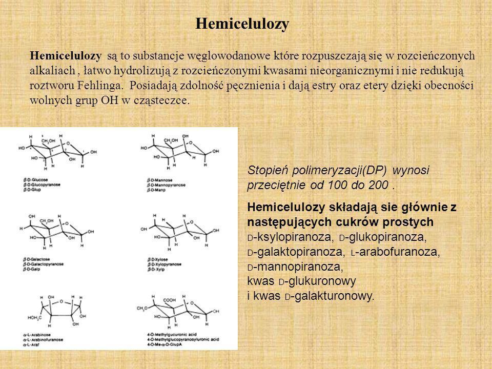 Udział hemiceluloz w drewnie struktura O-acetyl-4- O- methylglucuronoxyla n.