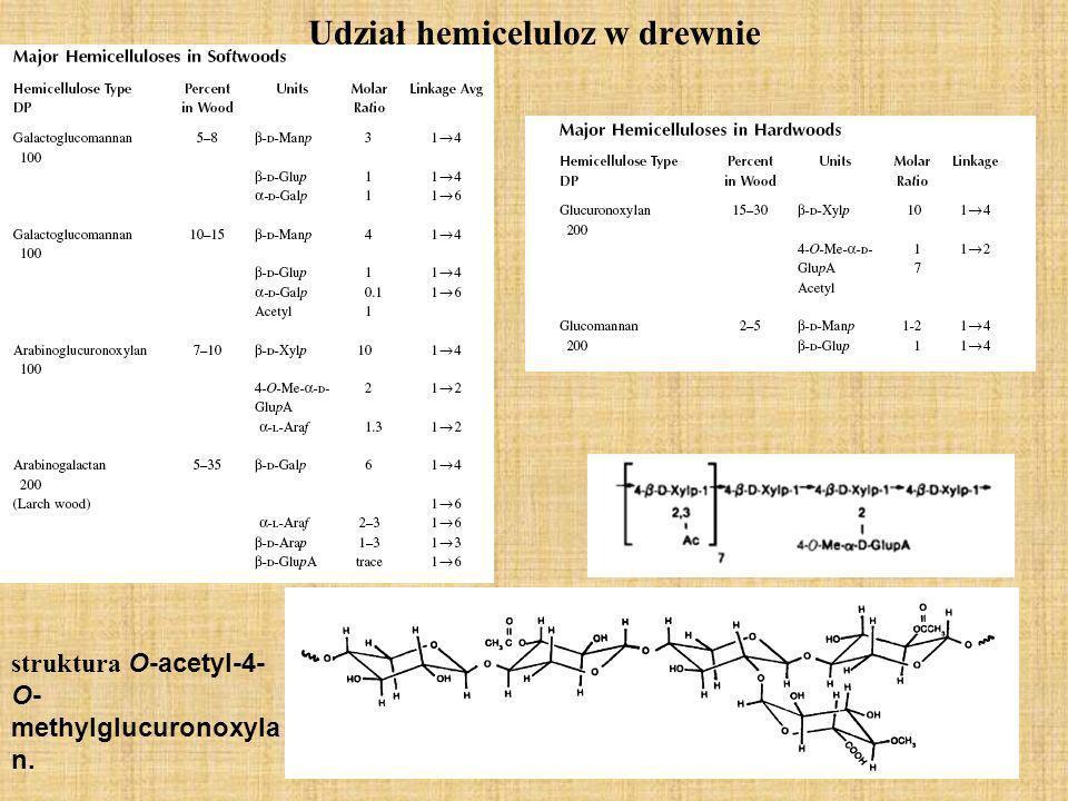 Podział hemiceluloz wg.Normana dzielimy hemicelulozy na celulozany i poliuronidy Celulozany to pentozany (C 5 H 8 O 4 ) n (np; ksylan, araban) i heksozany (C 6 H 10 O 5 ) n (np.