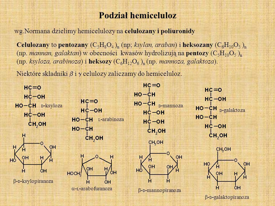 Podział hemiceluloz Poliuronidy-to substancje bezpostaciowe zawierające kwasy heksauronowe w których oprócz grup hydroksylowych występują grupy metoksylowe, acetylowe, karboksylowe.