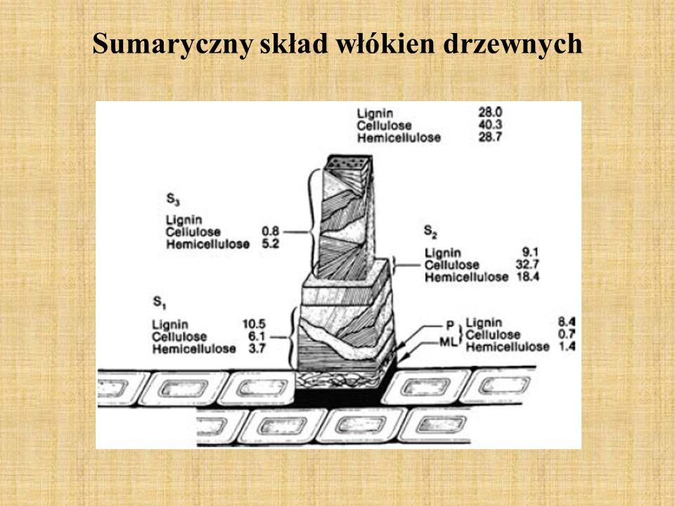 Sumaryczny skład włókien drzewnych
