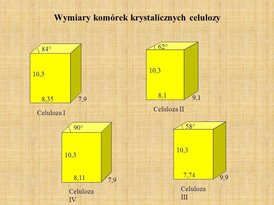 Wymiary komórek krystalicznych celulozy Celuloza I 8,35 10,3 7,9 84° Celuloza II 62° 10,3 8,1 9,1 Celuloza III 58° 10,3 7,74 9,9 Celuloza IV 90° 10,3