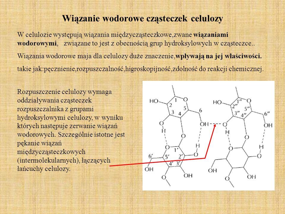 Wiązanie wodorowe cząsteczek celulozy W celulozie występują wiązania międzycząsteczkowe,zwane wiązaniami wodorowymi, związane to jest z obecnością gru