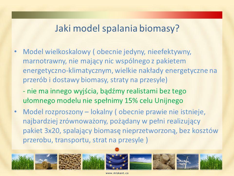 Jaki model spalania biomasy? Model wielkoskalowy ( obecnie jedyny, nieefektywny, marnotrawny, nie mający nic wspólnego z pakietem energetyczno-klimaty