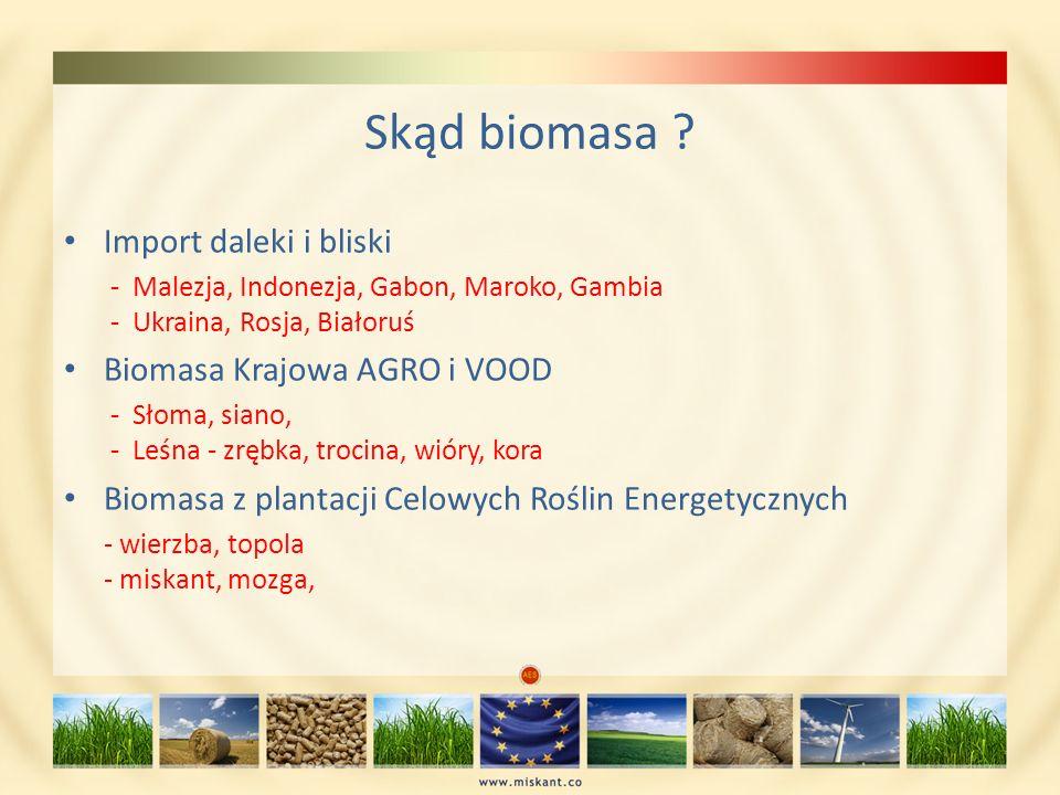 Skąd biomasa ? Import daleki i bliski - Malezja, Indonezja, Gabon, Maroko, Gambia - Ukraina, Rosja, Białoruś Biomasa Krajowa AGRO i VOOD - Słoma, sian