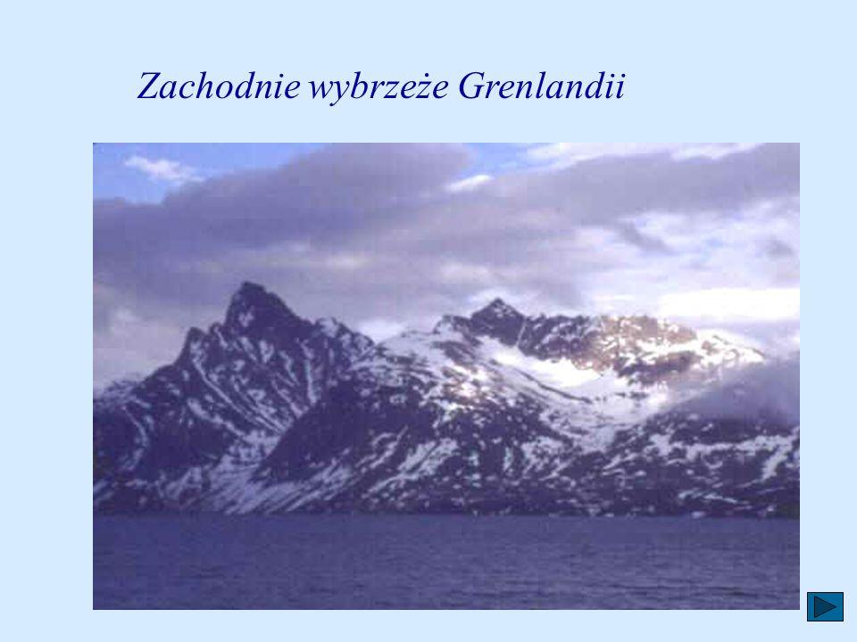 Godło Godło Grenlandii przedstawia niedźwiedzia polarnego w pozycji wyprostowanej na niebieskim tle. Niedźwiedź podnosi lewą łapę - niedźwiedzie polar