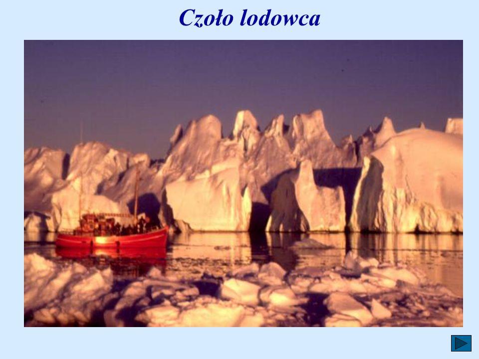 Pod koniec zimy, gdy przygrzeje słońce, od lądolodu Grenlandii zaczynają odrywać się olbrzymie kawały lodu i płyną w kierunku oceanu będąc wielkim zag