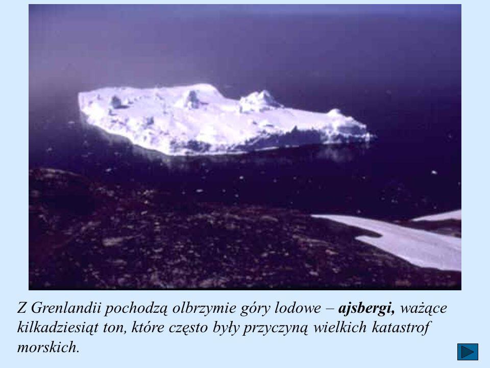 Czoło lodowca