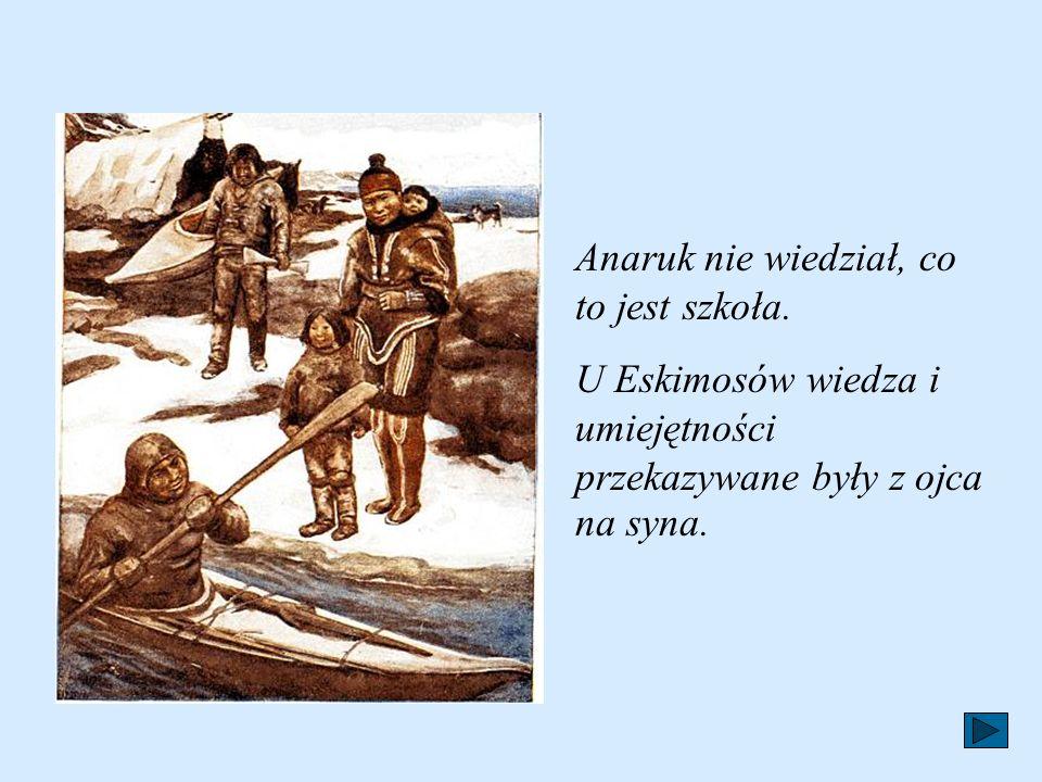 Oprócz dobrych cech charakteru Eskimosi posiadają też szereg umiejętności. Świetnie polują nawet na największe zwierzęta.Mają talent do rysunków. Chęt