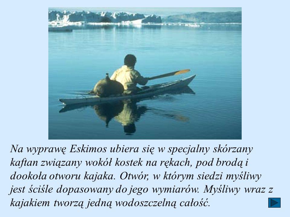 Polowanie na zwierzęta morskie jest rzeczą trudną i niebezpieczną. Rodacy Anaruka wypływali na morze w kajakach zbudowanych z żeber zwierzęcych powiąz