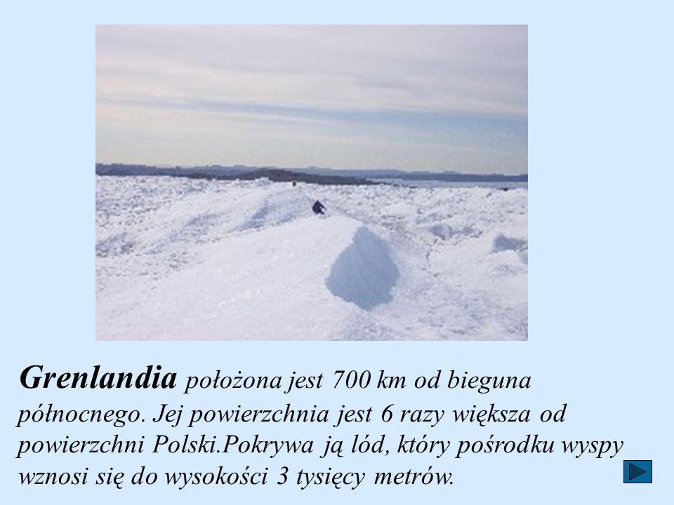 Grenlandia położona jest 700 km od bieguna północnego.