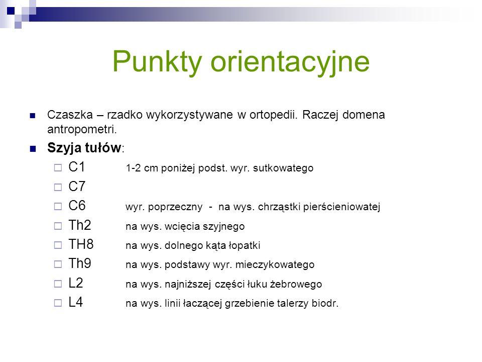 Punkty orientacyjne Czaszka – rzadko wykorzystywane w ortopedii. Raczej domena antropometri. Szyja tułów : C1 1-2 cm poniżej podst. wyr. sutkowatego C
