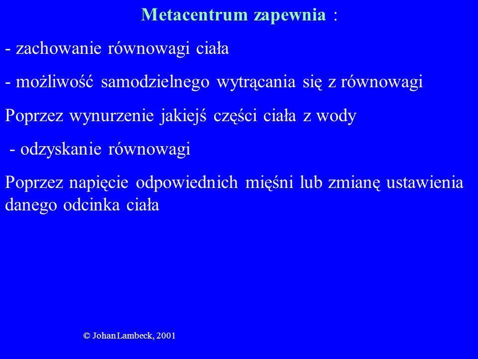 © Johan Lambeck, 2001 Metacentrum zapewnia : - zachowanie równowagi ciała - możliwość samodzielnego wytrącania się z równowagi Poprzez wynurzenie jaki