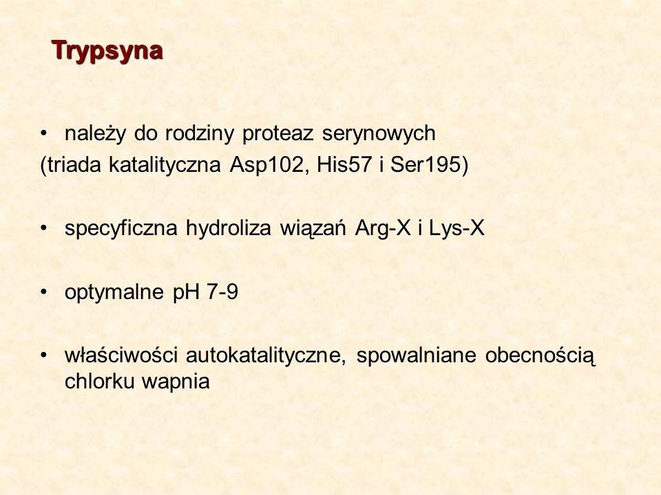 należy do rodziny proteaz serynowych (triada katalityczna Asp102, His57 i Ser195) specyficzna hydroliza wiązań Arg-X i Lys-X optymalne pH 7-9 właściwości autokatalityczne, spowalniane obecnością chlorku wapnia Trypsyna