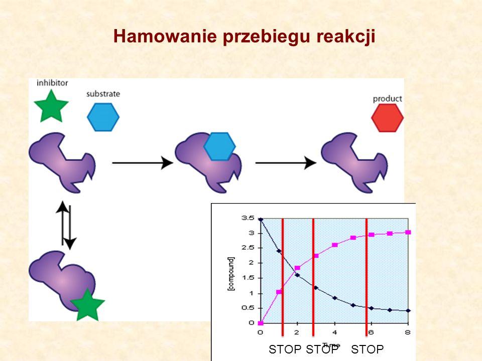 Enzymy zwiększają szybkość reakcji biochemicznych poprzez obniżenie energii aktywacji Enzymy jako biologiczne katalizatory