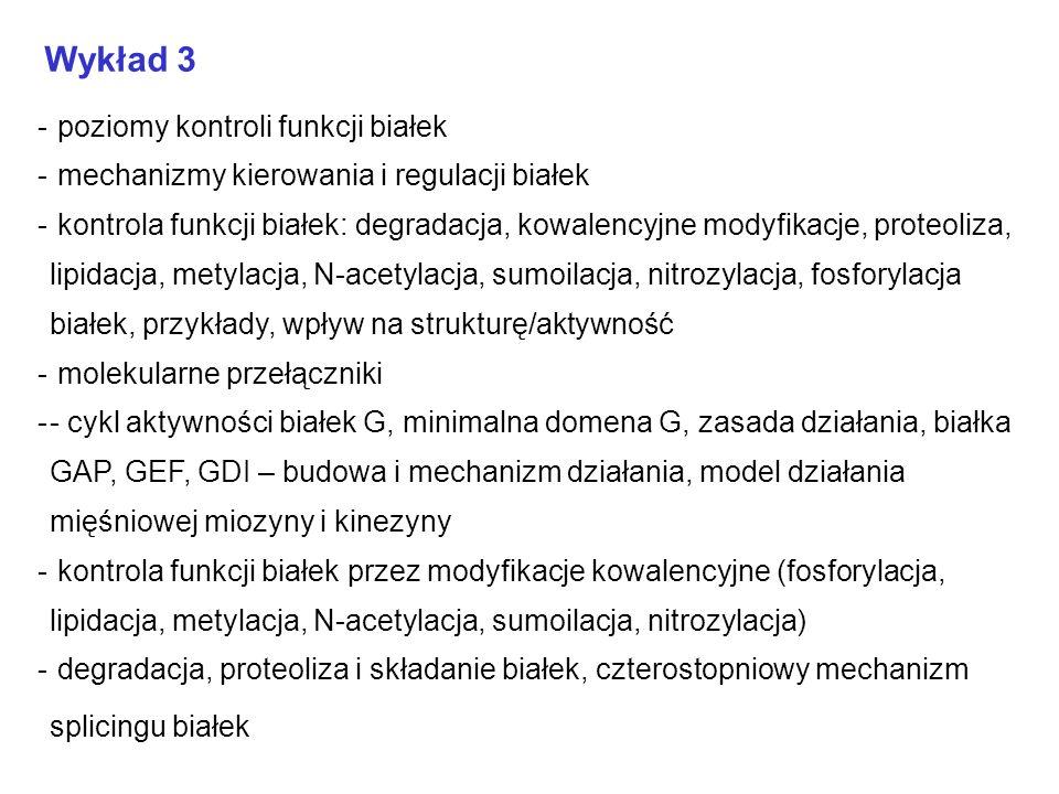 Wykład 4 Od sekwencji do funkcji: -- sekwencje homologiczne, dopasowanie sekwencyjne, motywy strukturalne i funkcjonalne (przykład), zasada 40% -- mikromacierze DNA, żele 2D, Y2H -- modelowanie homologiczne, profile-based threading, metody Rosetta, metoda GRID, THEMATICS -- sekwencje kameleonowe Biosynteza białka - etapy, funkcje poszczególnych IF, EF i RF, ogólny opis struktury krystalicznej rybosomu, czym jest PTC, synteza wiązania peptydowego, tunel wyjściowy, L22 i SecM