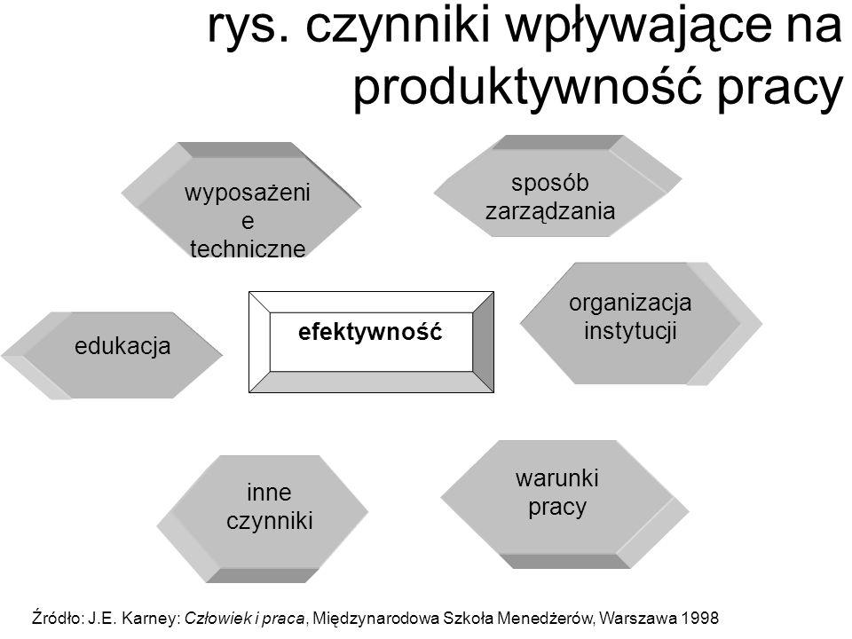 rys. czynniki wpływające na produktywność pracy efektywność organizacja instytucji sposób zarządzania wyposażeni e techniczne warunki pracy edukacja i