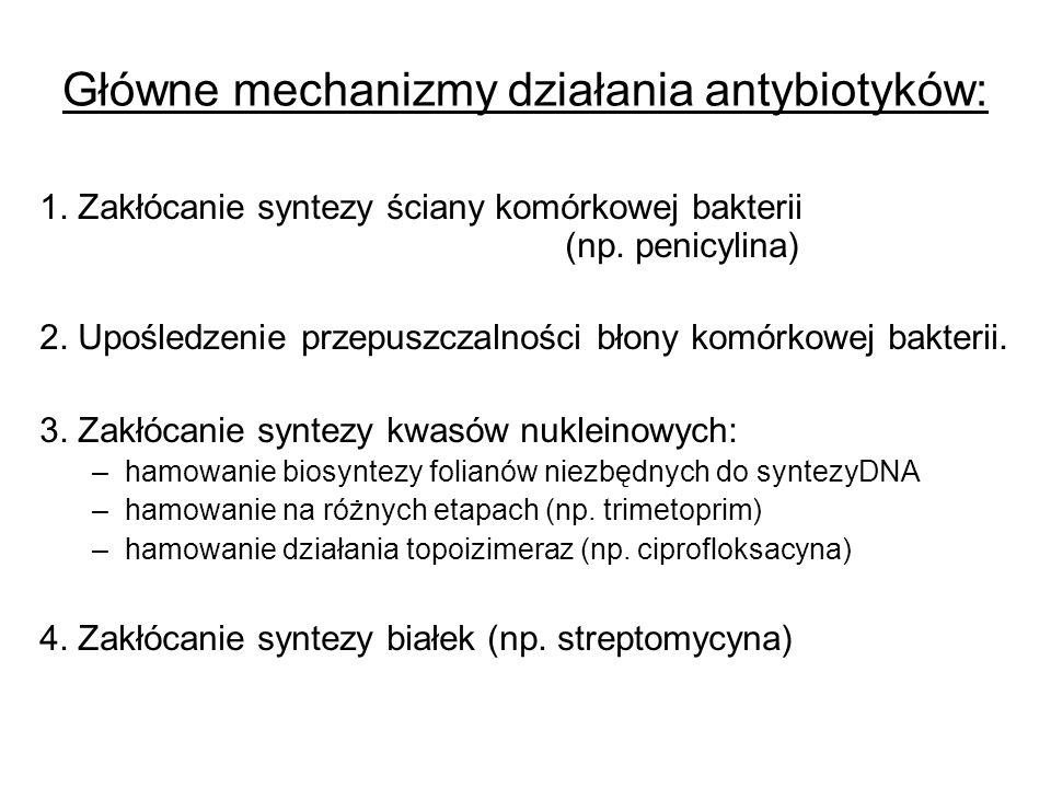 Główne mechanizmy działania antybiotyków: 1. Zakłócanie syntezy ściany komórkowej bakterii (np. penicylina) 2. Upośledzenie przepuszczalności błony ko
