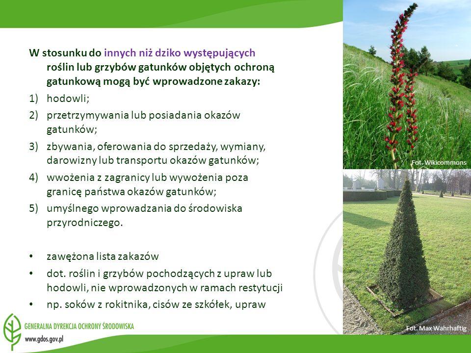 W stosunku do innych niż dziko występujących roślin lub grzybów gatunków objętych ochroną gatunkową mogą być wprowadzone zakazy: 1)hodowli; 2)przetrzy