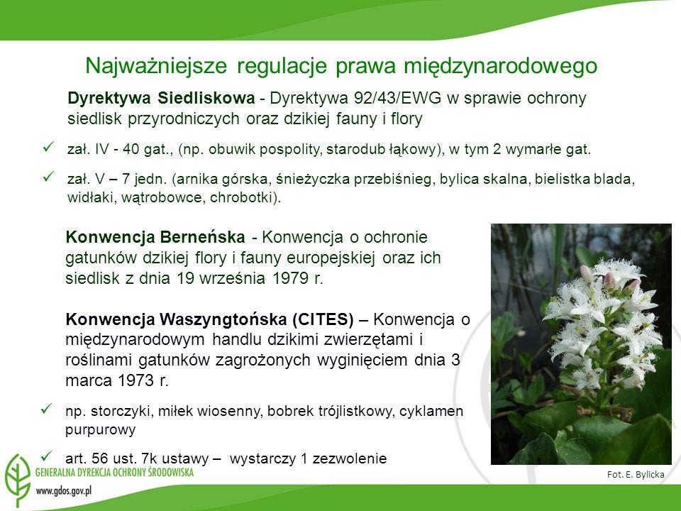 Najważniejsze regulacje prawa międzynarodowego Dyrektywa Siedliskowa - Dyrektywa 92/43/EWG w sprawie ochrony siedlisk przyrodniczych oraz dzikiej faun