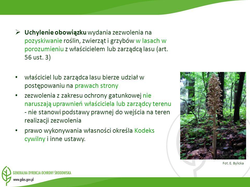 Uchylenie obowiązku wydania zezwolenia na pozyskiwanie roślin, zwierząt i grzybów w lasach w porozumieniu z właścicielem lub zarządcą lasu (art. 56 us