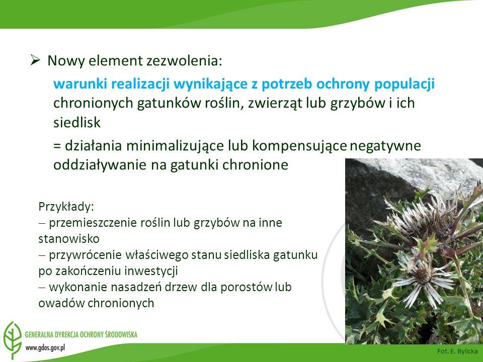 Nowy element zezwolenia: warunki realizacji wynikające z potrzeb ochrony populacji chronionych gatunków roślin, zwierząt lub grzybów i ich siedlisk =