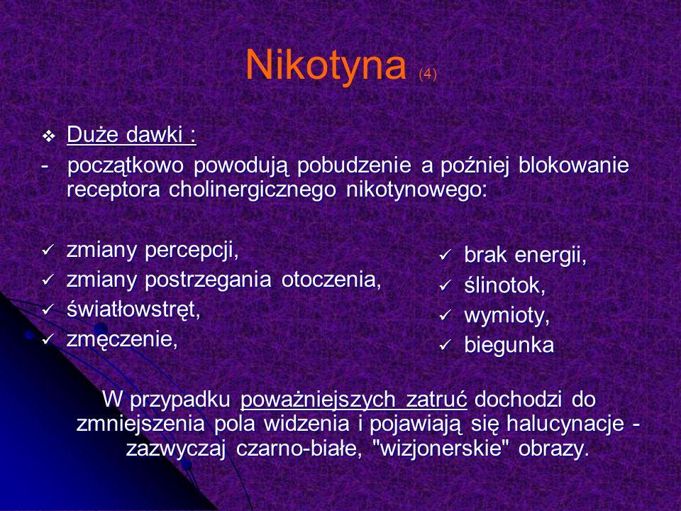 Nikotyna (4) Duże dawki : Duże dawki : - początkowo powodują pobudzenie a poźniej blokowanie receptora cholinergicznego nikotynowego: zmiany percepcji, zmiany percepcji, zmiany postrzegania otoczenia, zmiany postrzegania otoczenia, światłowstręt, światłowstręt, zmęczenie, zmęczenie, W przypadku poważniejszych zatruć dochodzi do zmniejszenia pola widzenia i pojawiają się halucynacje - zazwyczaj czarno-białe, wizjonerskie obrazy.