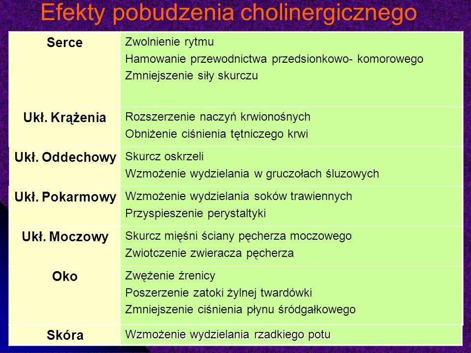 Efekty pobudzenia cholinergicznego Serce Zwolnienie rytmu Hamowanie przewodnictwa przedsionkowo- komorowego Zmniejszenie siły skurczu Ukł.