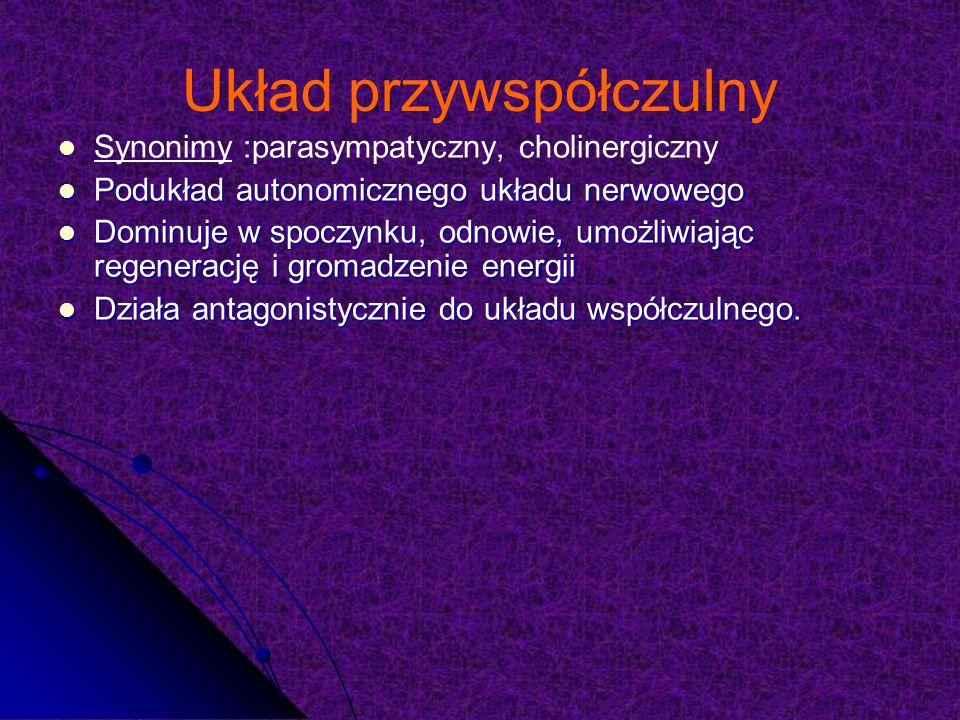 Parasympatykolityki, poprzez hamowanie ukł.parasympatycznego, działają jak sympatykomimetyki Parasympatykolityki, poprzez hamowanie ukł.parasympatycznego, działają jak sympatykomimetyki