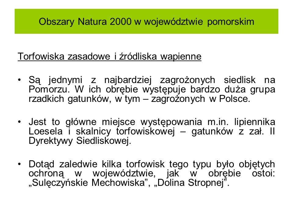 Obszary Natura 2000 w województwie pomorskim Torfowiska zasadowe i źródliska wapienne Są jednymi z najbardziej zagrożonych siedlisk na Pomorzu. W ich