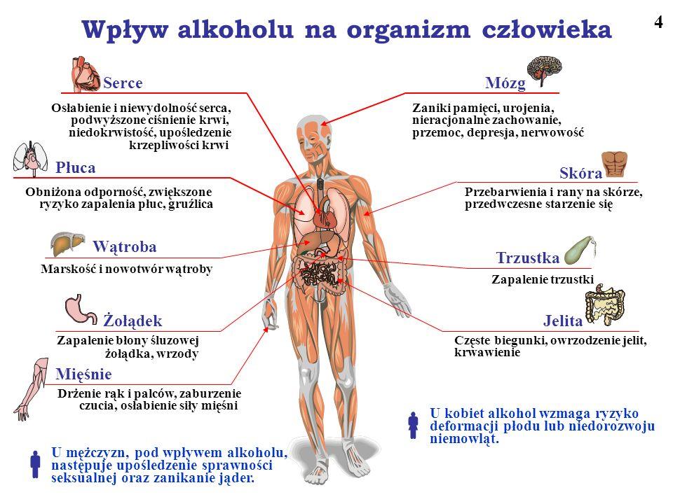 Wpływ alkoholu na organizm człowieka Osłabienie i niewydolność serca, podwyższone ciśnienie krwi, niedokrwistość, upośledzenie krzepliwości krwi Serce