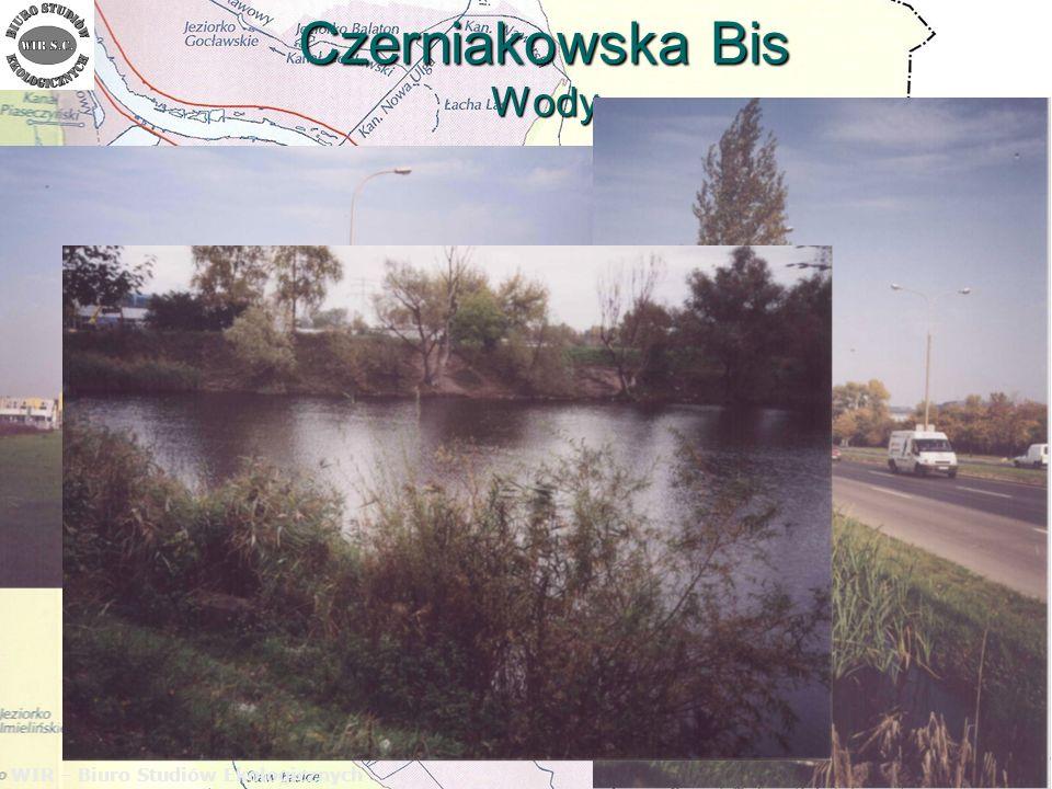 Czerniakowska Bis Wody WIR – Biuro Studiów Ekologicznych W zakresie ochrony wód gruntowych wstępne rozpoznanie tego zagadnienia wskazuje, że infiltracja w grunt wód opadowych z odwodnienia projektowanej ulicy Czerniakowska – Bis nie będzie dużym zagrożeniem dla tych wód.
