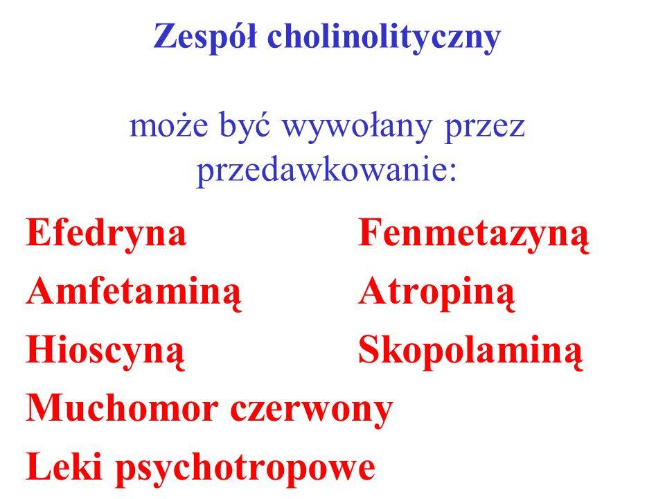 Zespół cholinolityczny może być wywołany przez przedawkowanie: EfedrynaFenmetazyną AmfetaminąAtropiną Hioscyną Skopolaminą Muchomor czerwony Leki psyc