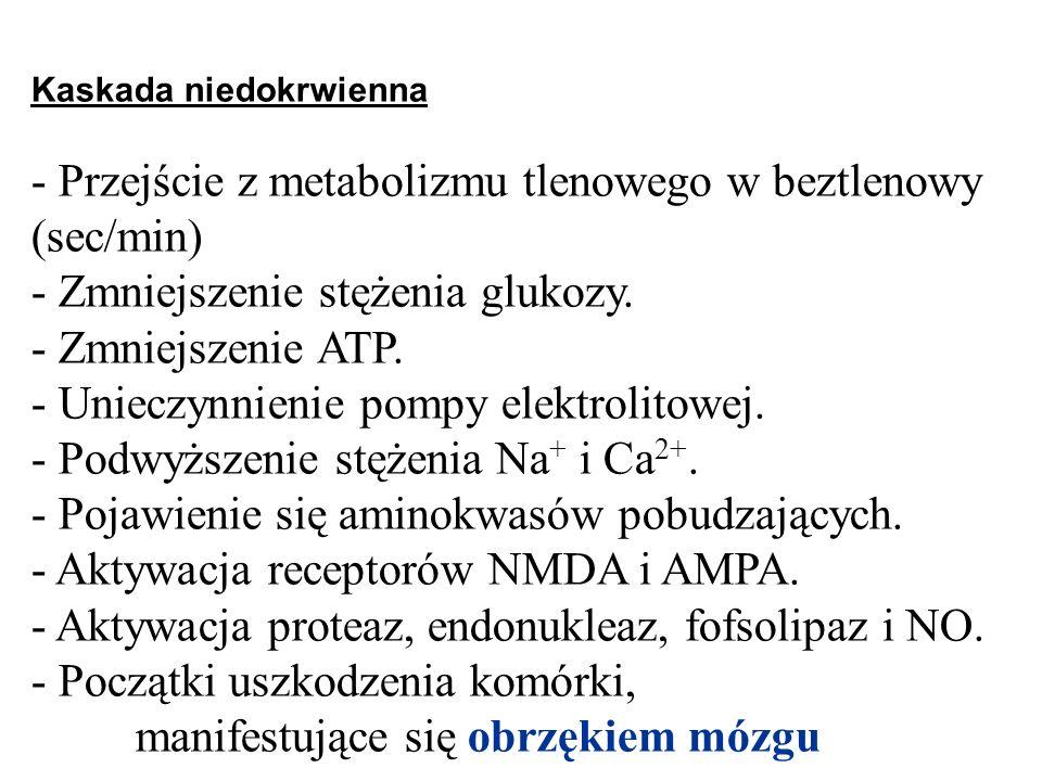 Kaskada niedokrwienna - Przejście z metabolizmu tlenowego w beztlenowy (sec/min) - Zmniejszenie stężenia glukozy. - Zmniejszenie ATP. - Unieczynnienie