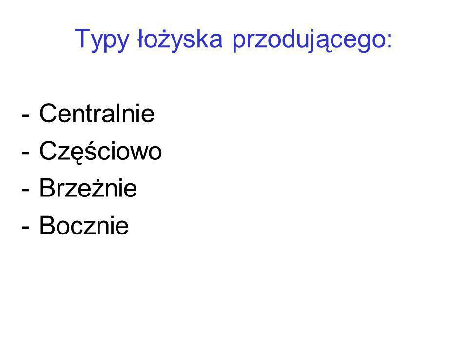 Typy łożyska przodującego: -Centralnie -Częściowo -Brzeżnie -Bocznie