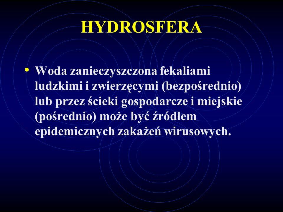 HYDROSFERA Woda zanieczyszczona fekaliami ludzkimi i zwierzęcymi (bezpośrednio) lub przez ścieki gospodarcze i miejskie (pośrednio) może być źródłem e