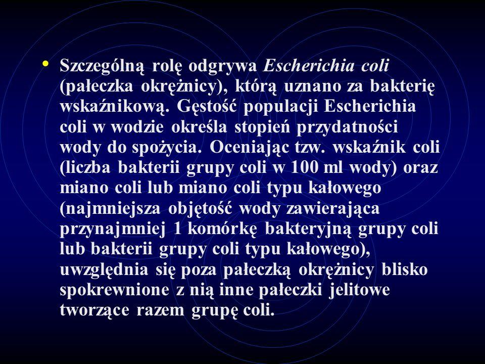 Szczególną rolę odgrywa Escherichia coli (pałeczka okrężnicy), którą uznano za bakterię wskaźnikową. Gęstość populacji Escherichia coli w wodzie okreś