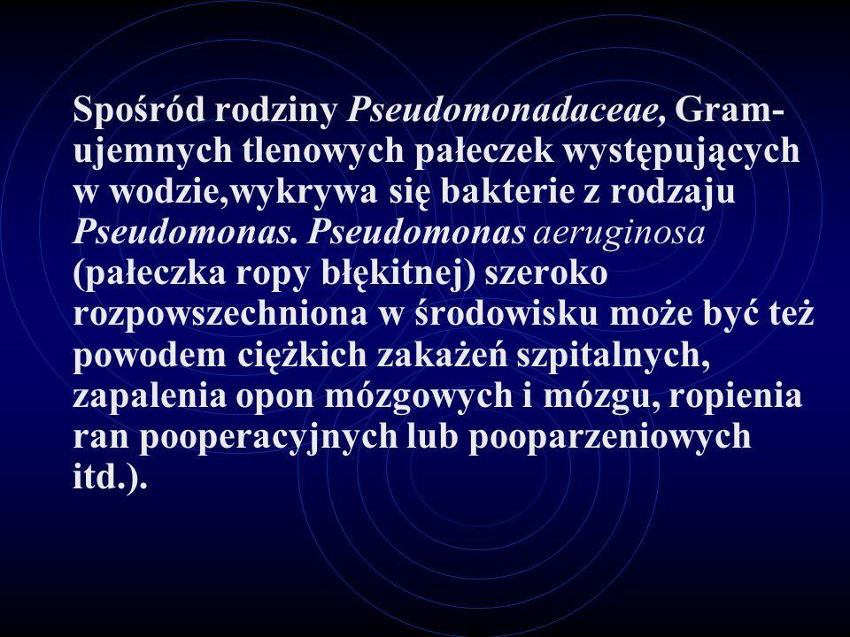 Spośród rodziny Pseudomonadaceae, Gram- ujemnych tlenowych pałeczek występujących w wodzie,wykrywa się bakterie z rodzaju Pseudomonas. Pseudomonas aer