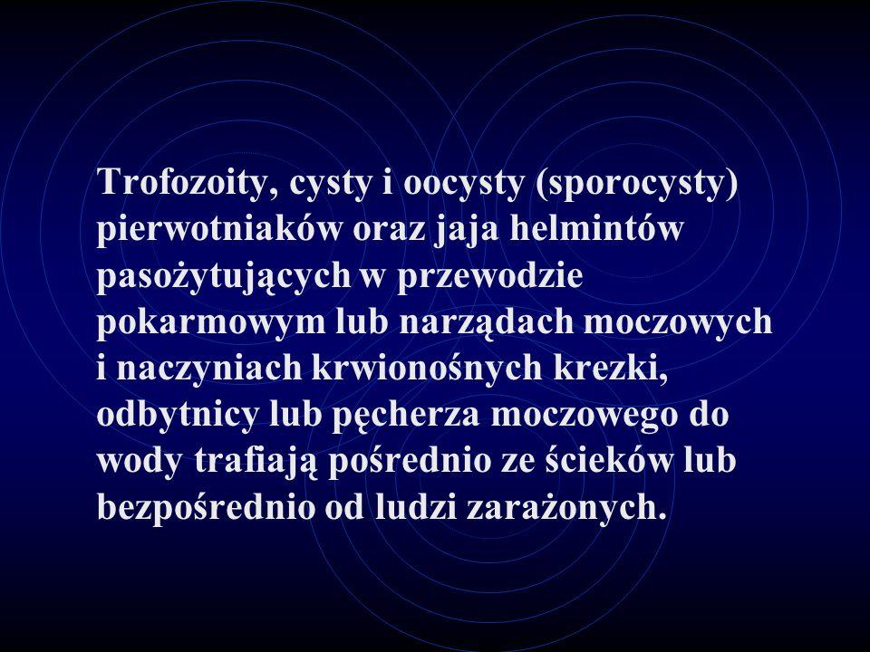 Trofozoity, cysty i oocysty (sporocysty) pierwotniaków oraz jaja helmintów pasożytujących w przewodzie pokarmowym lub narządach moczowych i naczyniach
