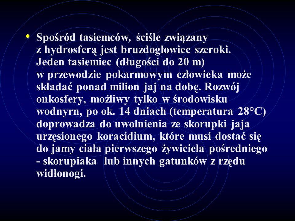 Spośród tasiemców, ściśle związany z hydrosferą jest bruzdogłowiec szeroki. Jeden tasiemiec (długości do 20 m) w przewodzie pokarmowym człowieka może