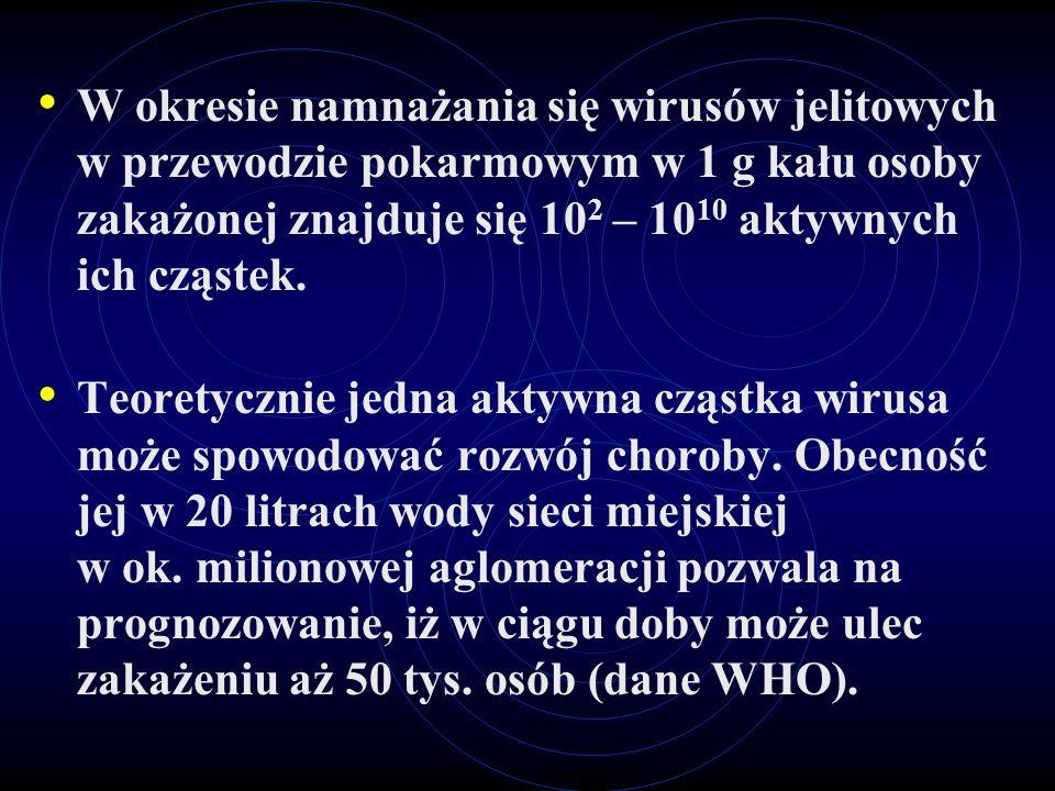 Borowina i woda (ok.