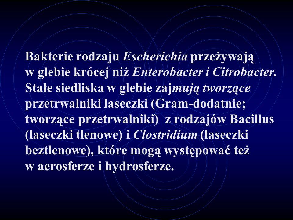 Bakterie rodzaju Escherichia przeżywają w glebie krócej niż Enterobacter i Citrobacter. Stałe siedliska w glebie zajmują tworzące przetrwalniki lasecz